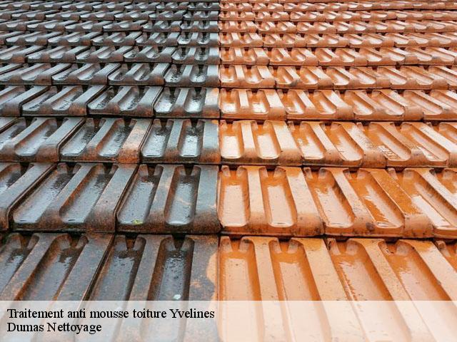 traitement anti mousse toiture 78 yvelines t l. Black Bedroom Furniture Sets. Home Design Ideas