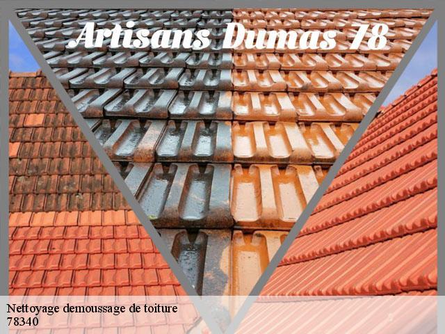 Nettoyage et demoussage de toiture Les Clayes Sous Bois tél: 01.85.53.56.91