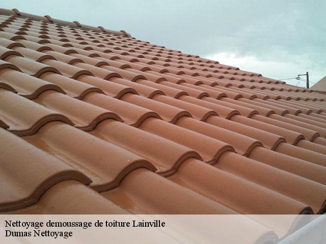 Nettoyage et demoussage de toiture Lainville tél: 01.85.53.56.91