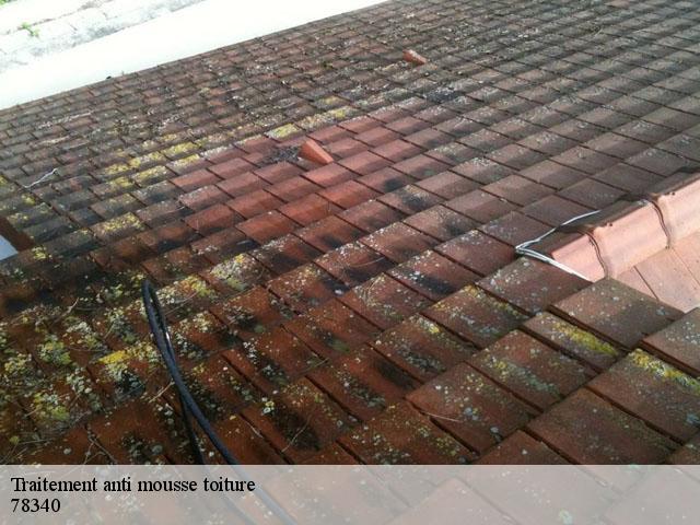 Traitement anti mousse toiture Les Clayes Sous Bois tél: 01.85.53.56.91