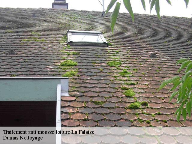 Traitement anti mousse toiture La Falaise tél: 01.85.53.56.91