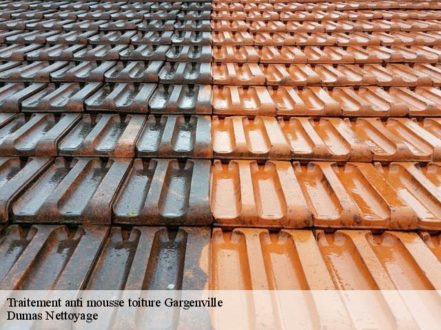 Traitement anti mousse toiture Gargenville tél: 01.85.53.56.91
