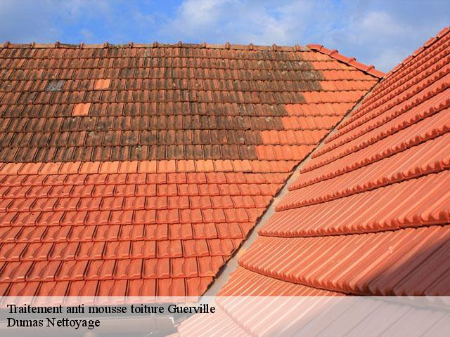produit nettoyant toiture entreprise de nettoyage dmoussage hydrofuge de toiture caen with. Black Bedroom Furniture Sets. Home Design Ideas