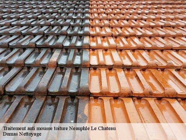 Traitement anti mousse toiture Neauphle Le Chateau tél: 01.85.53.56.91