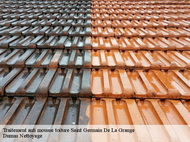Traitement anti mousse toiture Saint Germain De La Grange tél: 01.85.53.56.91