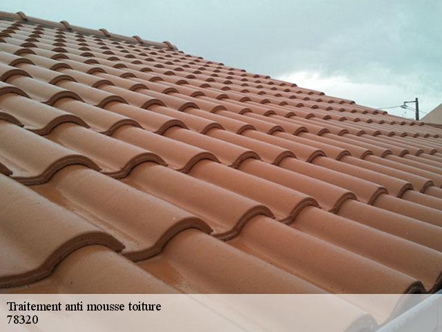 Traitement anti mousse toiture La Verriere tél: 01.85.53.56.91