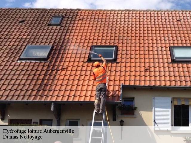 Entreprise pour hydrofuge toiture aubergenville t l for Hydrofuge toiture