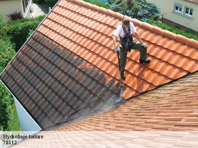 Entreprise pour hydrofuge toiture Fourqueux tél: 01.85.53.56.91