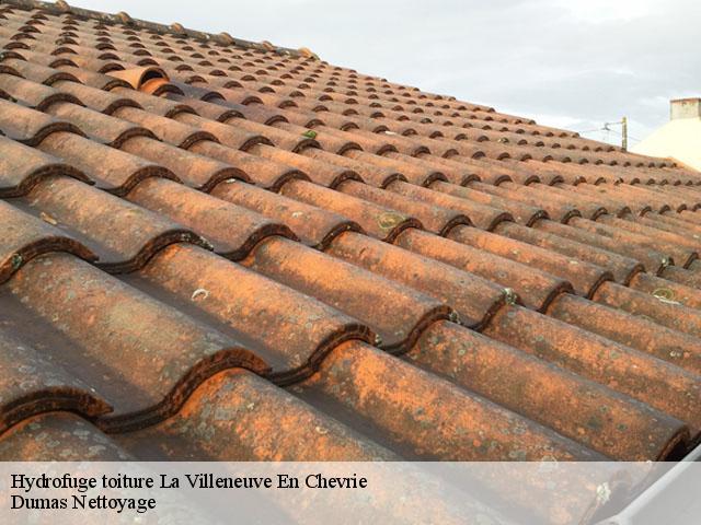 Entreprise pour hydrofuge toiture La Villeneuve En Chevrie tél: 01.85.53.56.91